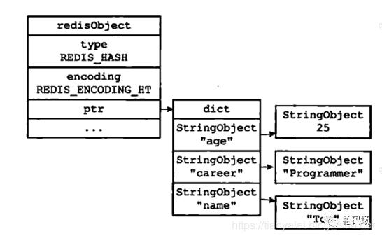信也项目实战-Redis存储压缩方案